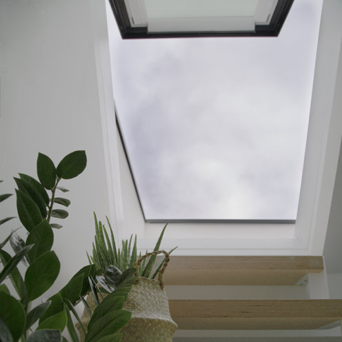 Aero Roof Access rooflight